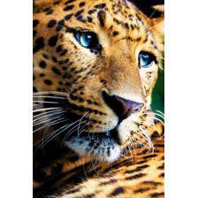 Задумчивый леопард