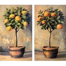 диптих апельсиновое и мандариновое дерево
