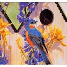 Алмазная вышивка набор Птица