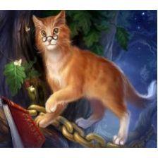 Алмазная вышивка набор Кот ученый