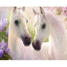 Алмазная вышивка набор Белые лошади