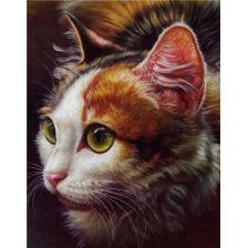Алмазная вышивка набор Кошка