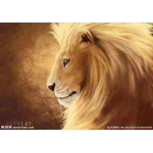 Алмазная вышивка набор Лев