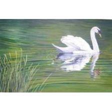 Алмазная вышивка набор Белый лебедь