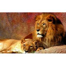 Алмазная вышивка набор Лев с львицей