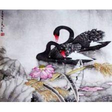 Алмазная вышивка набор Два черных лебедя