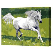 Алмазная вышивка набор Белый конь