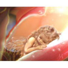 Спящая маленькая фея