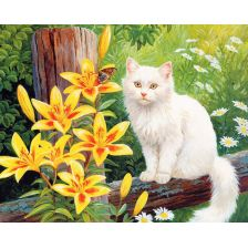 Алмазная вышивка набор Белая кошка
