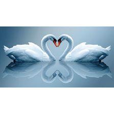 Алмазная вышивка набор Лебединная любовь