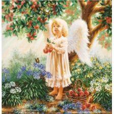 Ангел , собирающий плоды