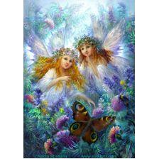 Феи бабочки
