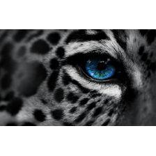 Голубой глаз ягуара
